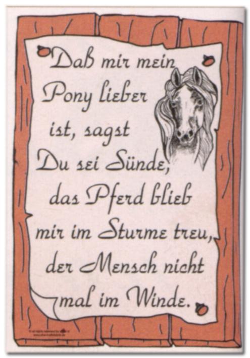 Hinweisschild - Das mir mein Pony lieber ist ... - Pferd Reiten Schild Warnschild Warnzeichen Arbeitssicherheit Türschild Tür Kunststoff Kunststoffschild