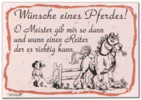 Hinweisschild 300 x 200 - Wünsche eines Pferdes ... - Pferd Reiten Schild Warnschild