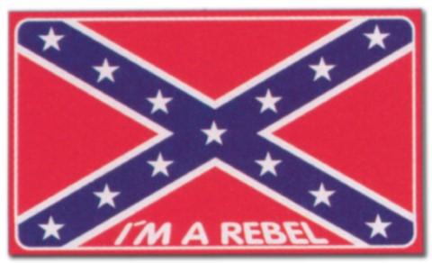Hinweisschild - I'm a Rebel - Rebell LKW Trucker Brummi Schild Warnschild