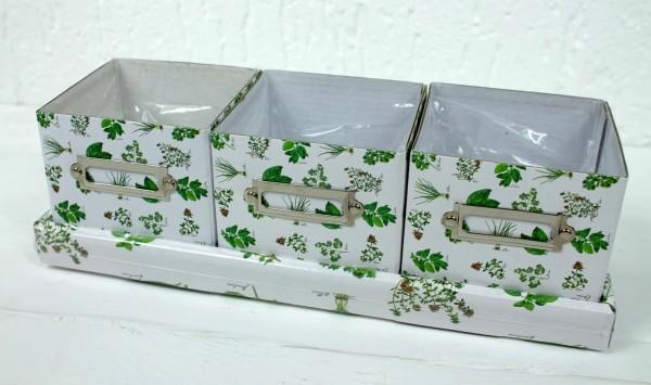 Pflanztopf für Kräuter, Keime, Sprossen - weiss grün - für Fensterbank oder Balk